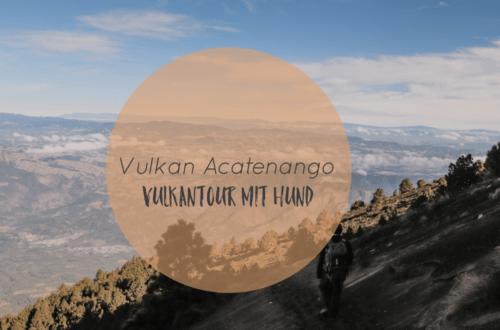 Vulkan Acatenango mit Hund |  Wanderung  in atemberaubende Lavawelten auf 3.976 Metern Höhe