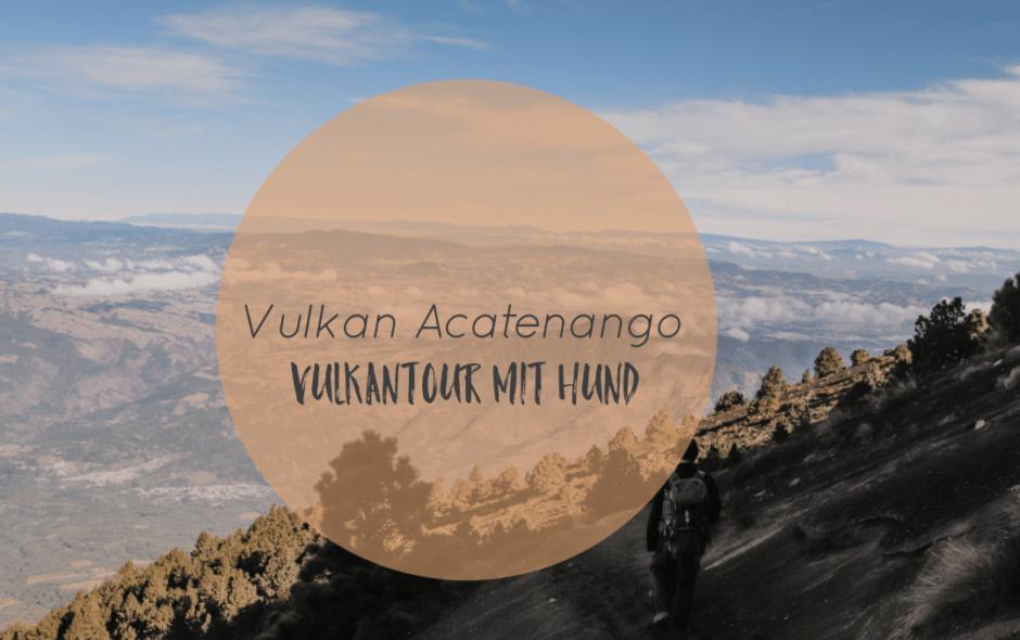 Acatenango Vulkan Wanderung mit Hund